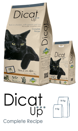 DICAT UP - Complete Recipe - Envase 4 kg